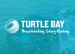TurtleBay 250x180