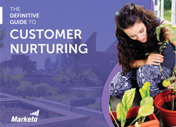 dg2 customer nurturing