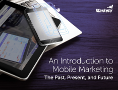 An Introduction to Mobile Marketing snip