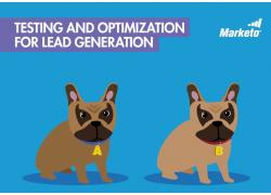 testing and optimization for lead gen thumbnail