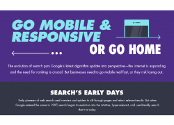 Infographic Responsive Mobile snip